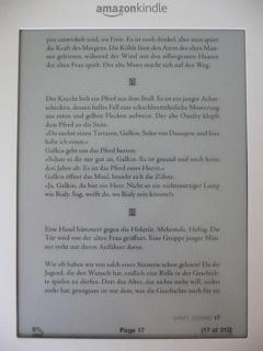 PDF auf kindle