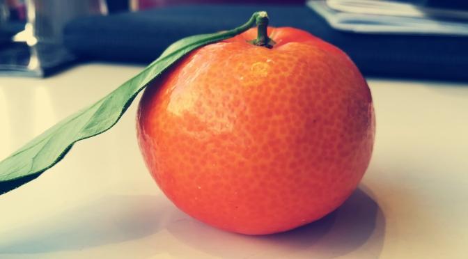 Eine Clementine aus Korsika und ein turbulenter Flug von Nizza nach Wien